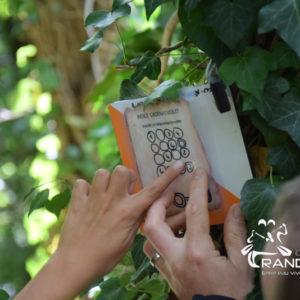 Anniv' Kids Outdoor – Anniversaires Enfants